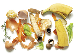 Different food waste on white background top view. Clean banana, egg shells, shells of nuts, cleaning onions carrots potatoes, bits of green salad and branches from the tomato.